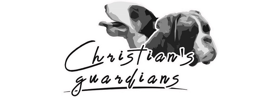 Christian's guardians